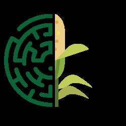 LBM_Logo web